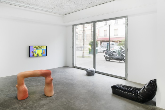Vue de l'exposition De toi à la surface, frac île-de-france, le plateau, Paris, 2016. Photo : Martin Argyroglo